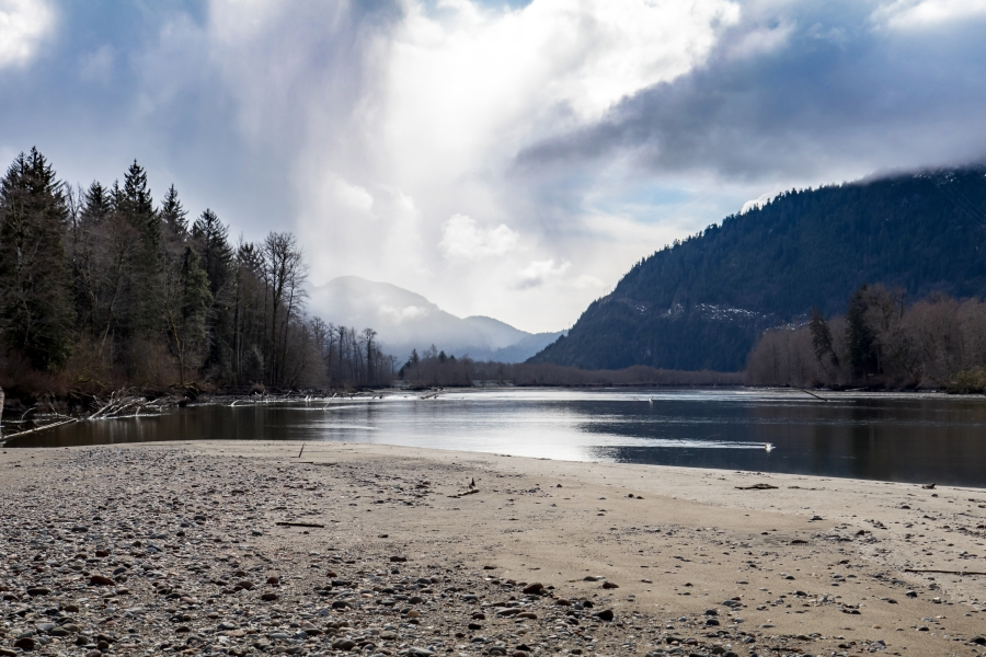 Squamish River Estuary, view of the river and riverbed