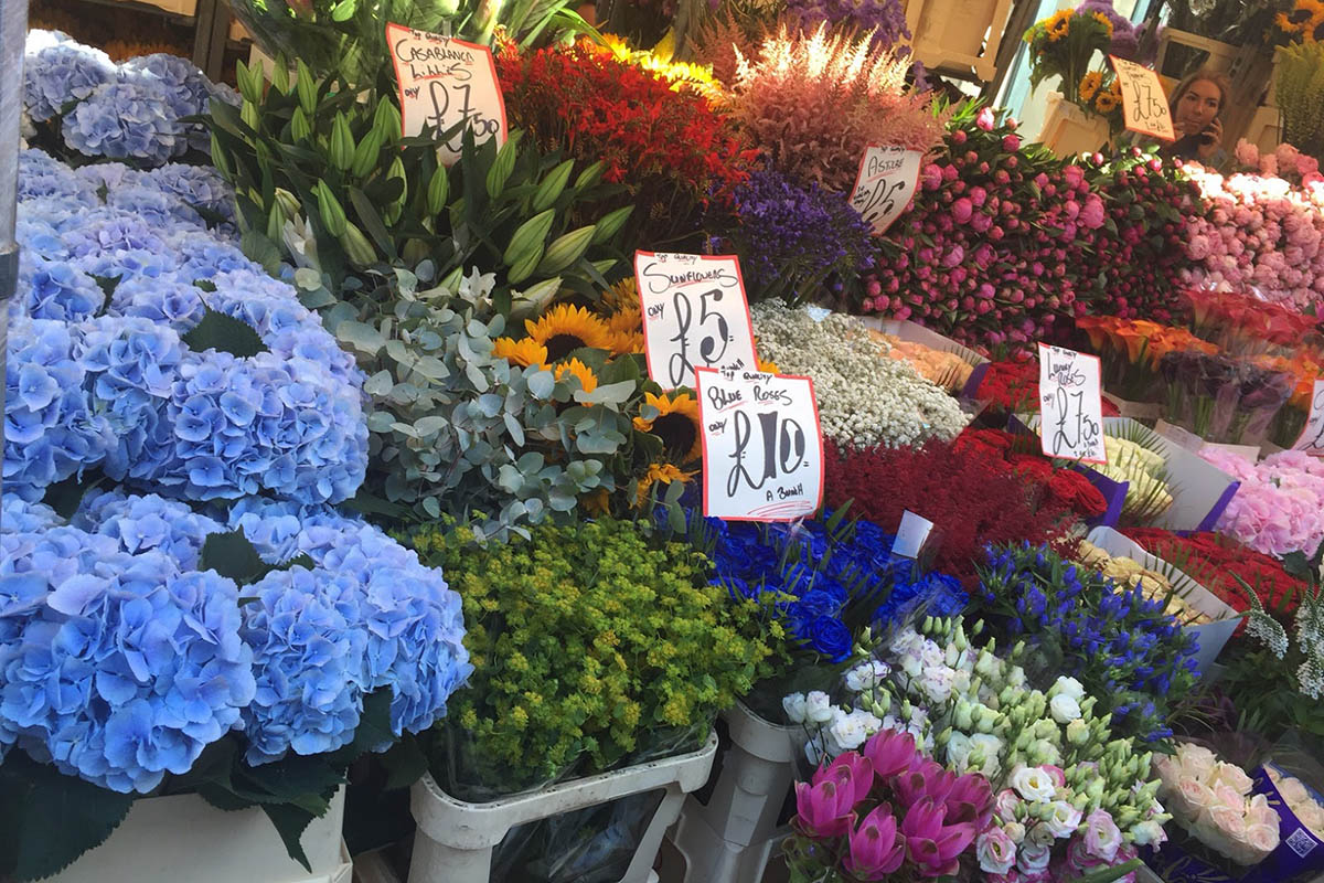 Discover London - Half day tours - Columbia Road Flower Market