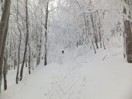 Cross-country skiing. Beskydy mountains, Czech Republic.