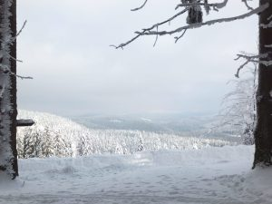 Cross-country skiing, Bumbalka, Beskydy Mountains, Czech Republic, Europe. The view North into the Czech Republic.