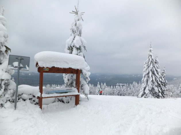 Cross-Country Skiing training, Beskydy Mountains, Czech Republic.