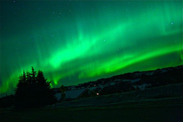 Northern Lights Alaska July