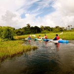Kayaking in Nariva swamp. Photo by Stephen Broadbridge