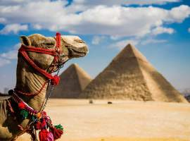 Discovery Tours Egypt 5