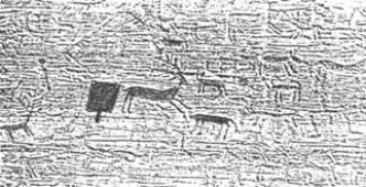 Fg. 6 - Grafiti rupestri della Val Camonica.