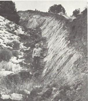 Abbassamento di un margine di faglia di oltre quattro metri in seguito ad un terremoto sussultorio in Nevada (da: La Terra, di A. Beiser. Ed Life-Epoca 1962)