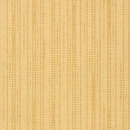 T41101