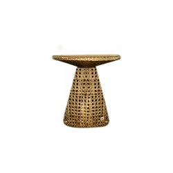 MUSHROOM COFFEE TABLE A068D