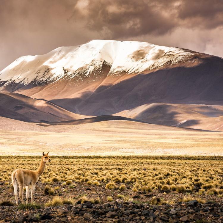 Cuál es el lugar más visitado de Argentina