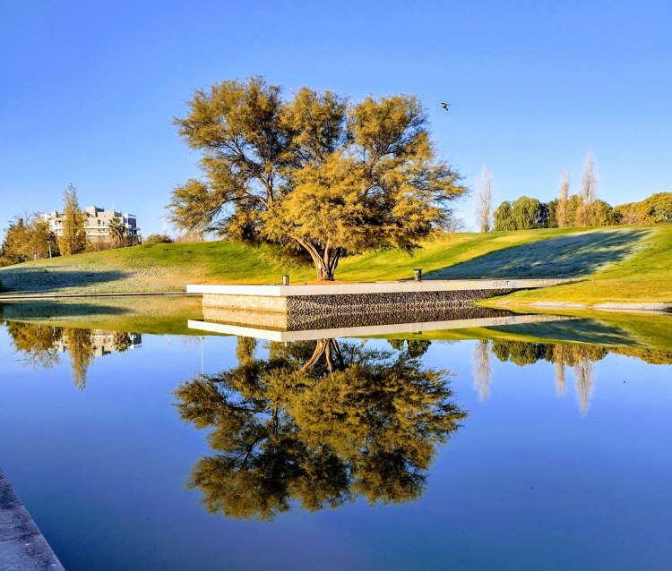 Lago del Parque Central