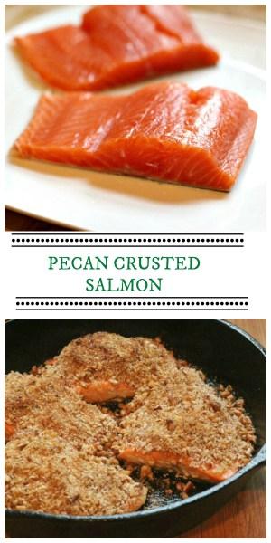 Pecan crusted steelhead trout