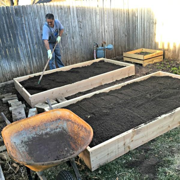 Oklahoma gardening raised beds