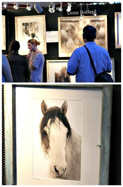 dona bollard art horses