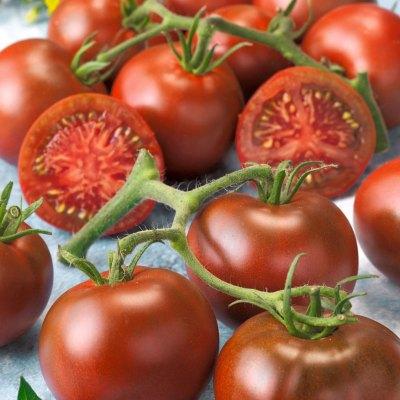 Early Black Choice Black Hybrid tomato