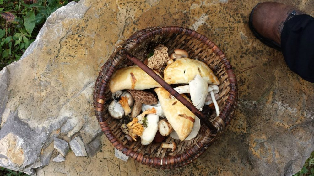Mushroom Hand Pies in a Basket with Foraged Mushrooms