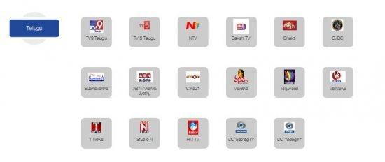 Telugu Channels In ZIng Digital 99