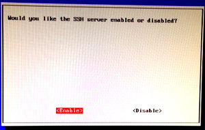 raspi-config : confirm SSH server activation
