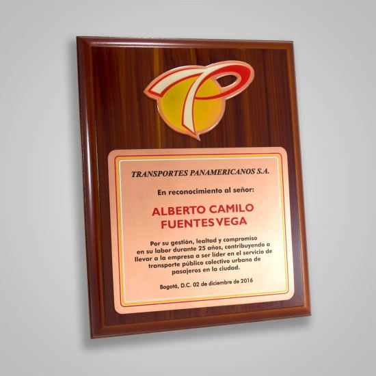 Placa Conmemorativa Panamericanos