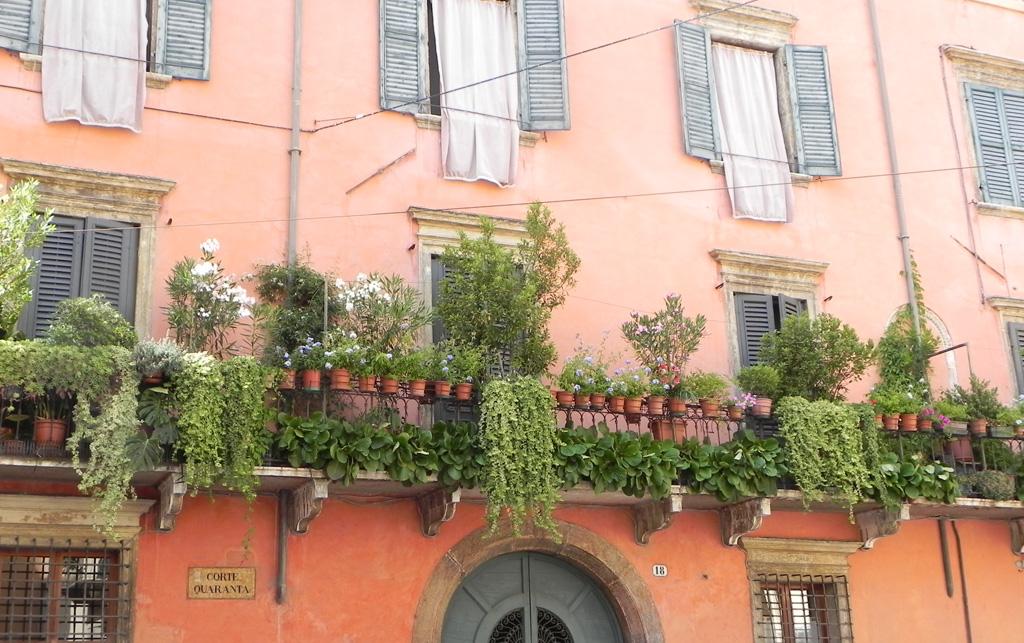 verona balcone piante