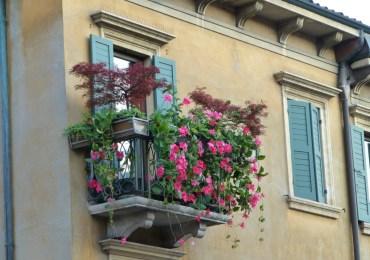 20120715 balconefioritoviastellaverona