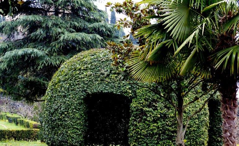 l'igloo verde e la palma nel parco del Museo Africano di Verona
