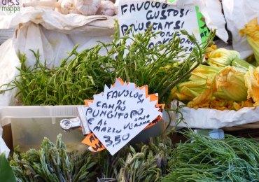 Pungitopo e bruscansi fruttivendolo via fama verona