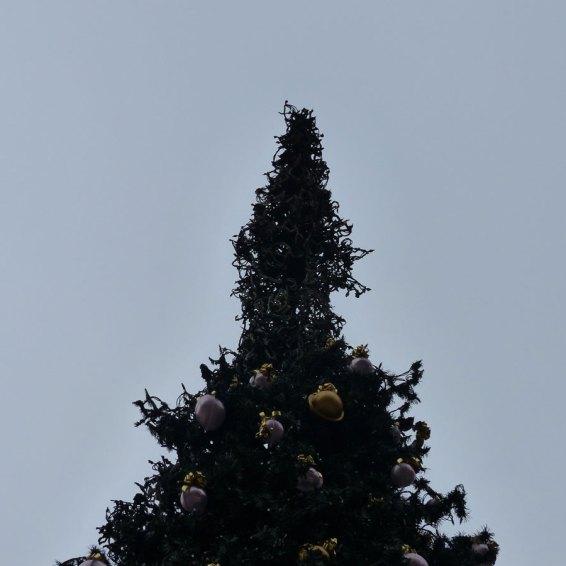 20140103 Punta albero di Natale bruciato Piazza Erbe Verona