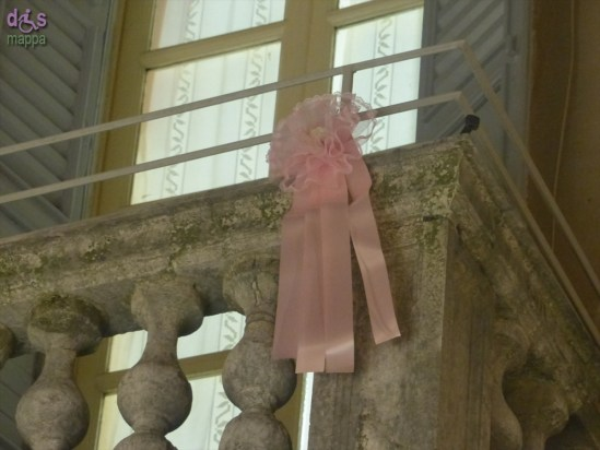 20140305 Fiocco rosa via Stella Verona 900