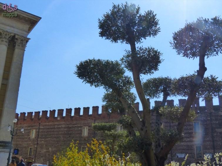 20140329 Verona in fiore Piazza Bra 22