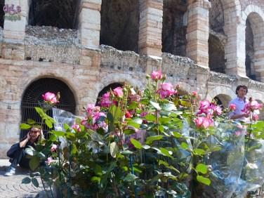 20140329 Verona in fiore Piazza Bra 247