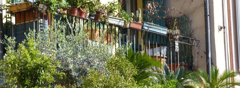 20140505 Terrazze verdi Piazza Isolo Verona 90