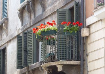 20140525 Balcone gerani palazzo Veronetta
