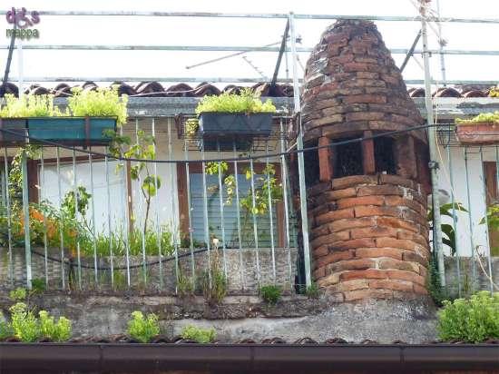 20140809 Camino cono Sottoriva Verona