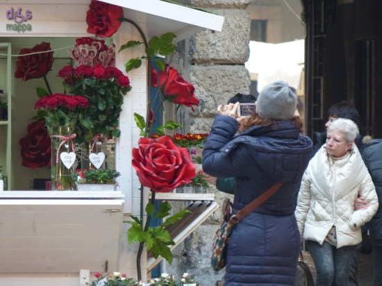 20150212 foto rosa gigante Verona in Love