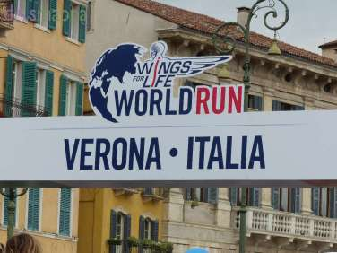 20150503 Wings for Life World Run Verona 902