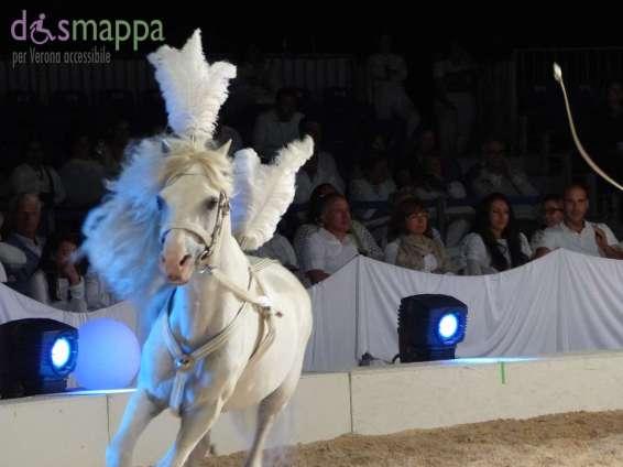 20150625 White teatro equestre Verona dismappa 599