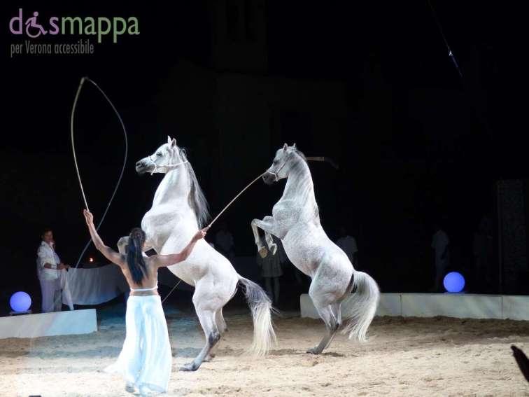20150626 White teatro equestre Verona dismappa 1615