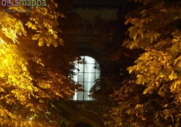 20151031 Arsenale Verona foglie gialle autunno dismappa