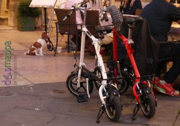 20160410 Biciclette turisti Piazza Dante Verona