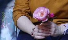 Le rose di Santa Rita