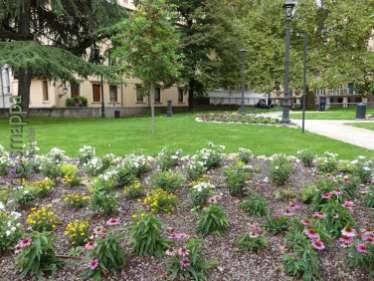 Aiuole e alberi nel giardino di Piazza Indipendenza a Verona dopo la riqualificazione del 2017