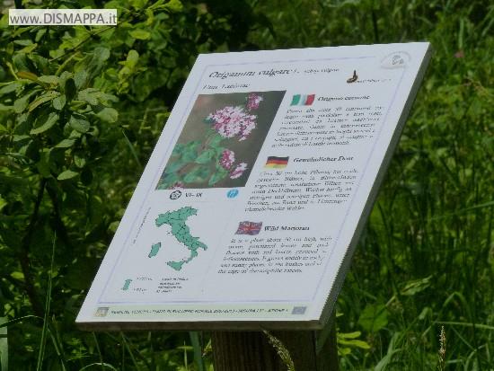 Orto botanico del Monte Baldo a Novezzina - Giardino d'Europa