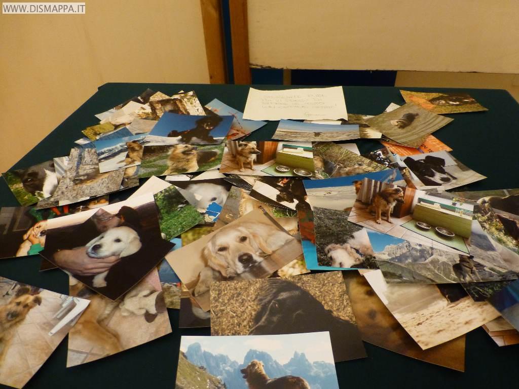 Mostra Foto in Love alla Biblioteca Civica di Verona