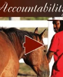 Accountability video link