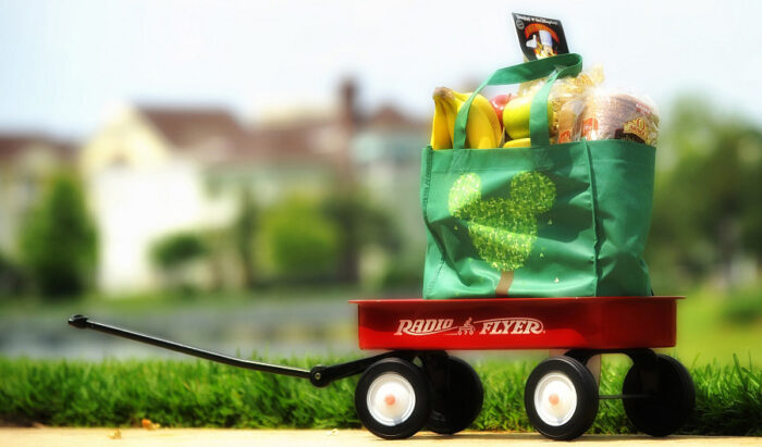Can I Have Groceries Delivered to My Walt Disney World Resort?