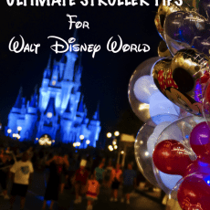 6 Best Stroller Tips for Walt Disney World
