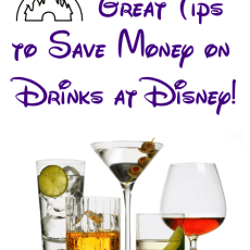 Tips to Save Money Drinking (alcohol) at Disney World