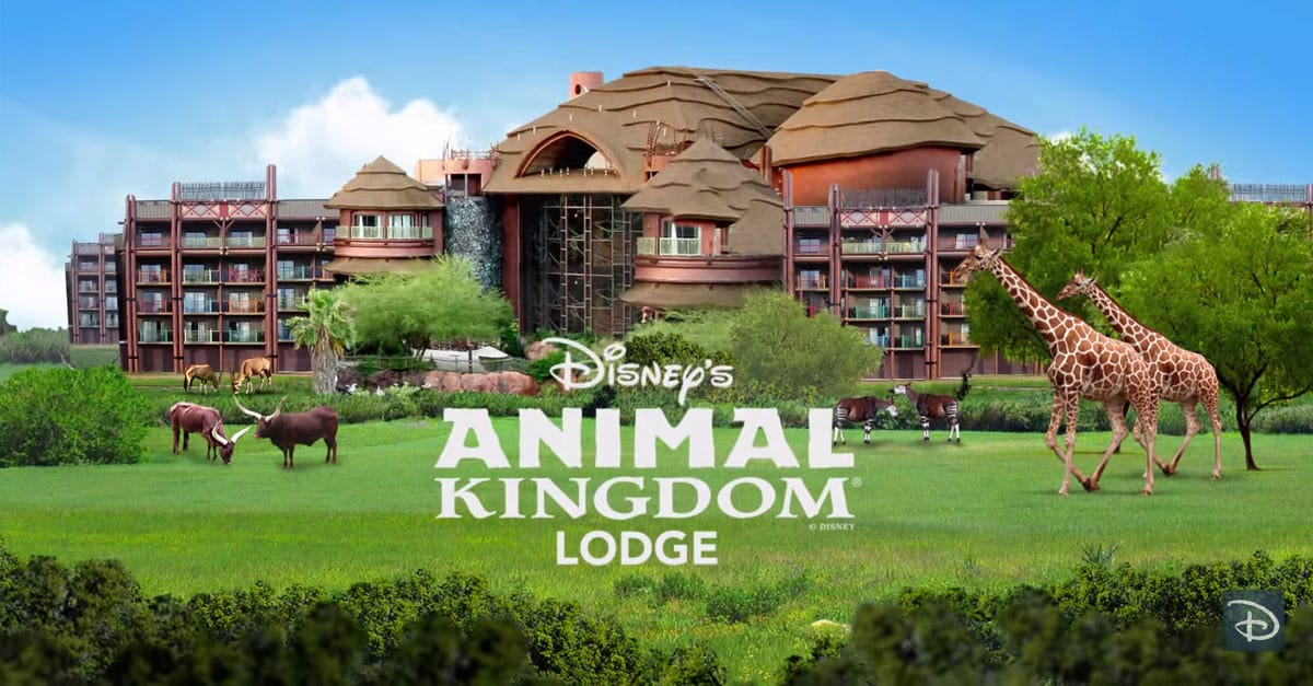Best Views From Walt Disney World Resorts Disneys