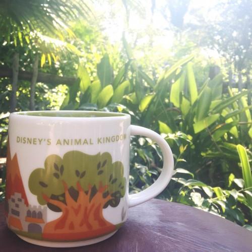 disney animal kingdom starbucks mug