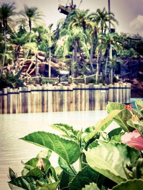 Typhoon Lagoon Walt Disney World Resort Water Park